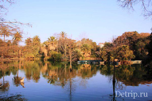 Большое озеро в парке Цитадели