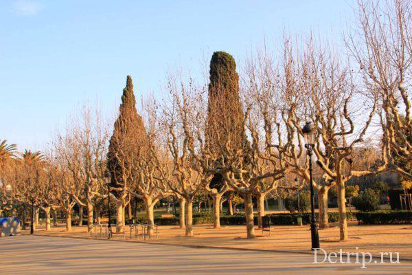 Прогулка по парку Цитадели