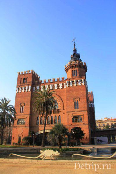 Зоологический музей разместился в замке трех драконов