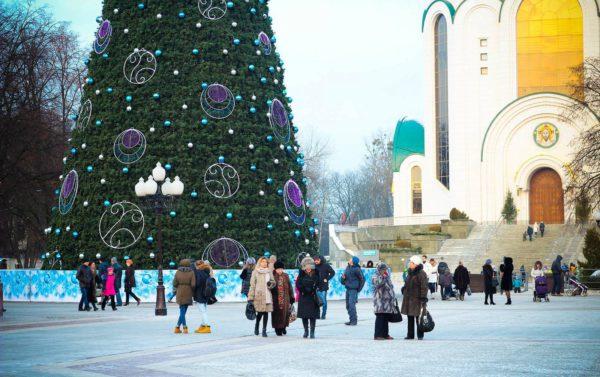 Калининград елка