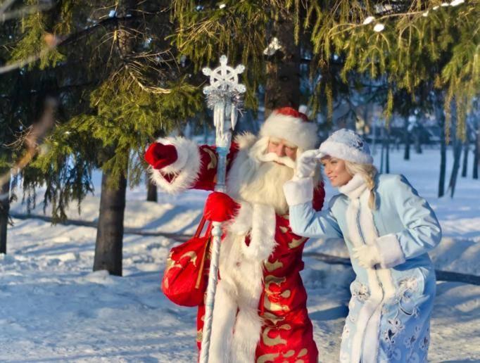 Новый год 2019 в Подмосковье. Ранее бронирование, туры, цены, коттеджи недорого изоражения