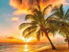 Куда поехать в январе на море искупаться и позагорать – пляжный отдых с детьми, без визы, недорого