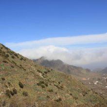 Обзорная экскурсия по Тенерифе
