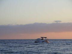 Остров Тенерифе (Канарские острова, Испания): горящие туры и цены на отдых